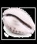 ciprea-thumb
