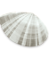 mactra-thumb